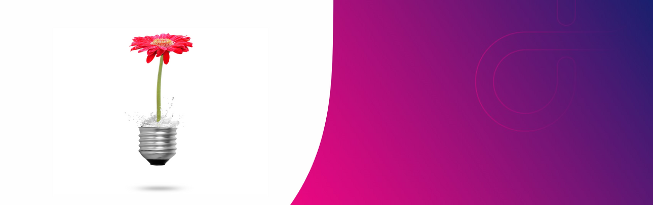 banner biobeauty.png
