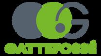logo_Gattefosse_sem_fondo.png
