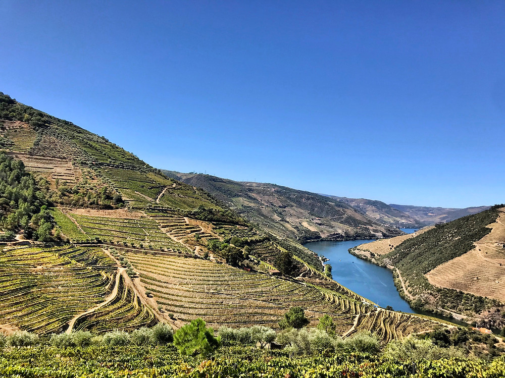Taken in the Douro Valley 2019. With a view like this, the wine HAS to be good!