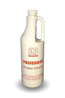 Squeegee Window Cleaner