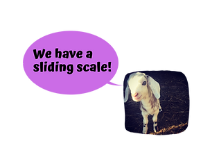 We have a sliding scale!-3.png