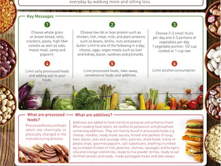 A South African-Based Dietary Infographic