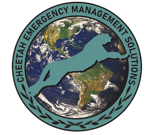 CEMs%2520LOGO_2_edited_edited.png