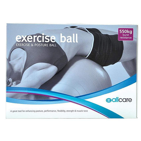 Exercise and Posture Ball 550kg burst resistance
