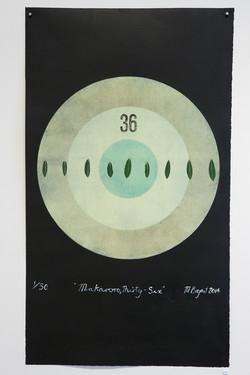Makaroro, Thirty-Six Michele Bryant 2014