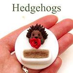 Hedgehog jewellery and gits