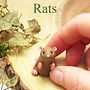 Rat jewellery and rat gifts