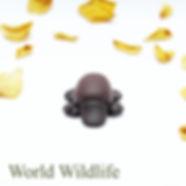 World Wildlife Collection button