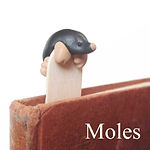 Mole jewellery and gifts