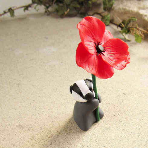 Badger with red poppy