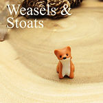 Weasel and stoat jewellery and gifts