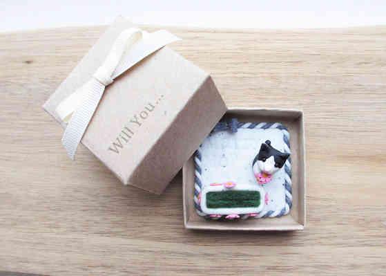 Pet proposal box