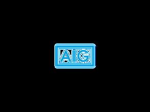 AIG No BG.png