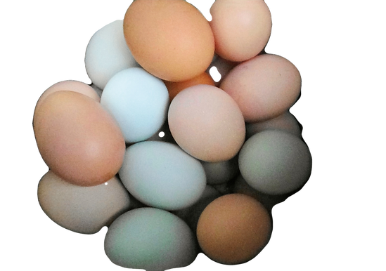 2021eggs_edited.png