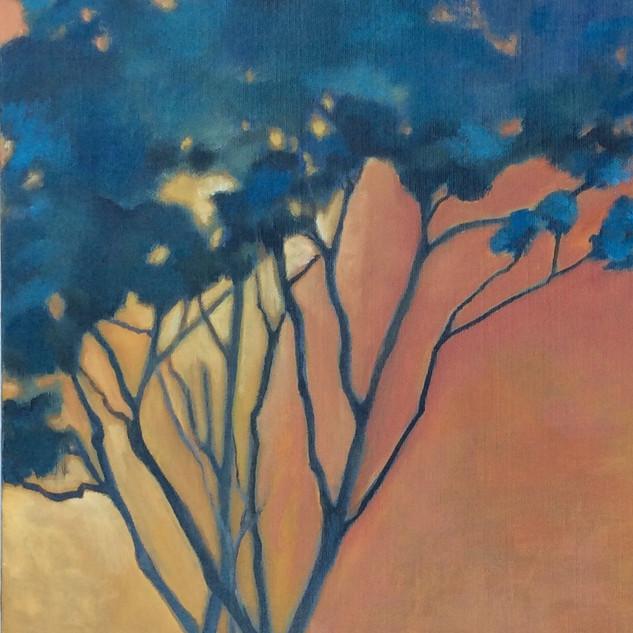 CIEL ORANGE, 35x75