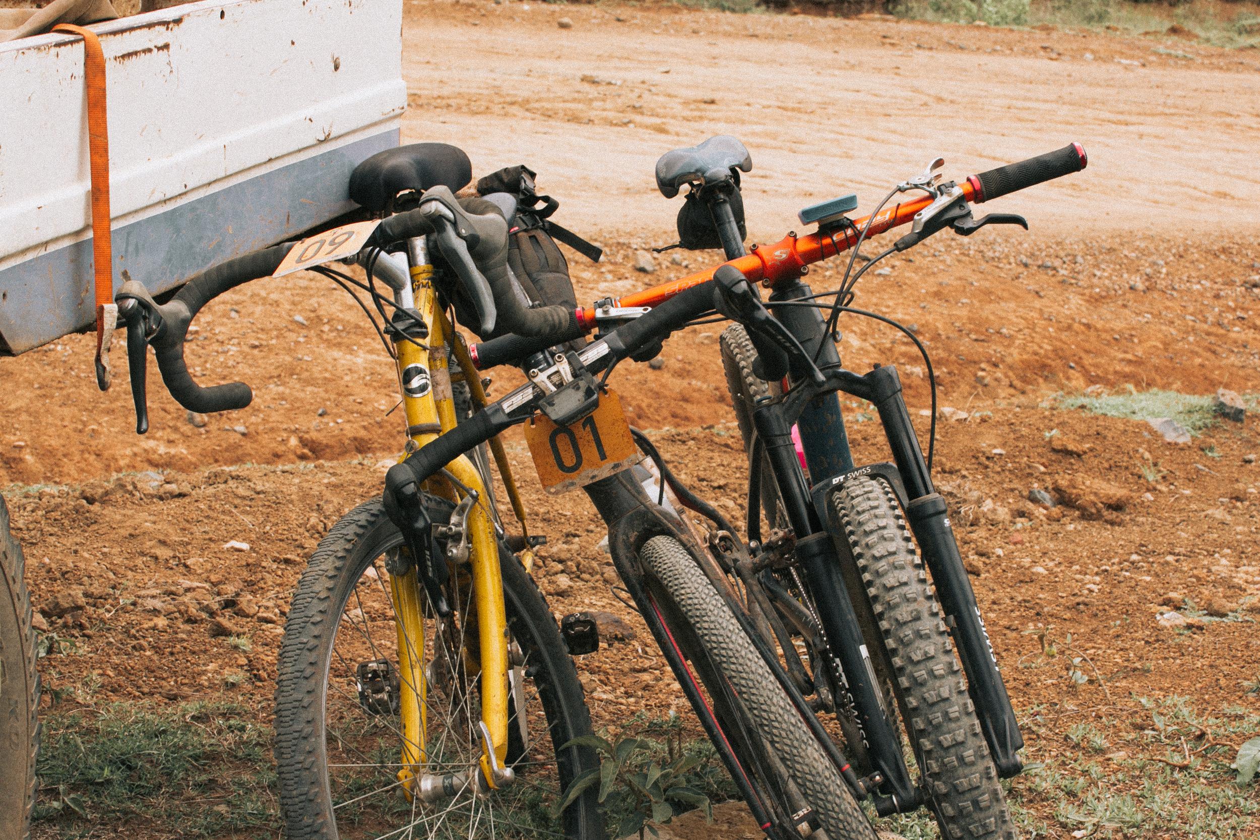 RideMigration-2041