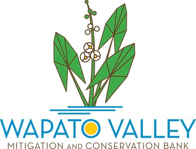 Wapato_Logo_4color.png