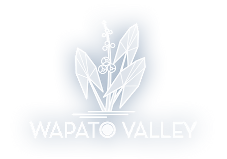 Wapato Valley Mitigation and Conservation Bank