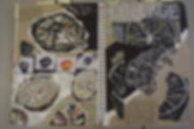 DSC_0023-e1511353838137.jpg