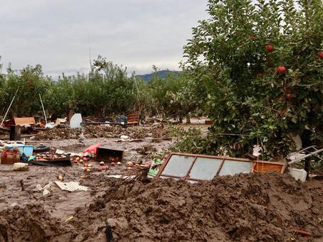 台風19号被災地支援