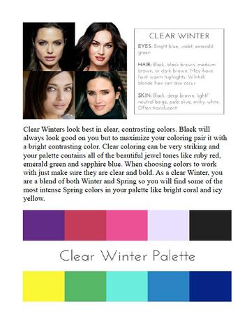 Clear Winter Palette 1