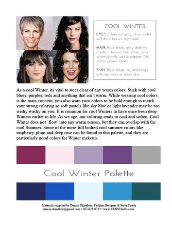 Cool Winter Palette 1