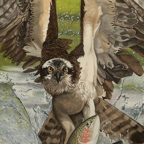 Tickle Bird