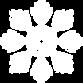 Snowflake-18.png