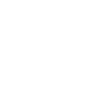 Snowflake-14.png