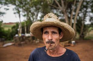 Cigars of Vinales