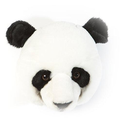 Wild and Soft- Panda