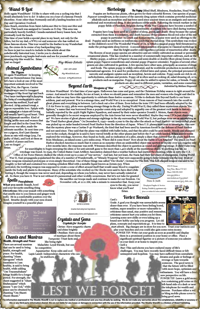 Issue 42 November 9-22, 20201024_2.png