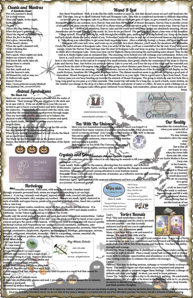 Issue 41 October 26-November 8, 20201024