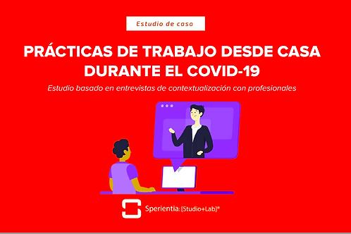 Prácticas del Trabajo en Casa Durante el Covid-19: Estudio basado en entrevistas