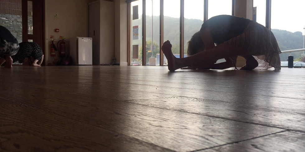 Contemporary Dance Taster Classes for Adults  (Online)