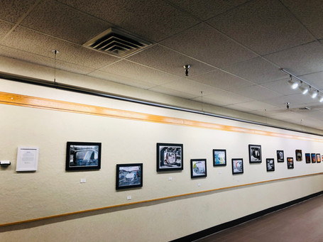 1st half of the Awaken Exhibition (80 foot wall)