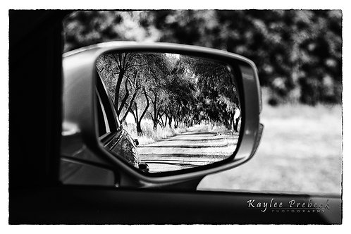 Grove - Wing Mirror Series