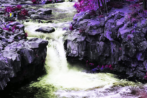 Intuition, Lower Falls, McCloud, California