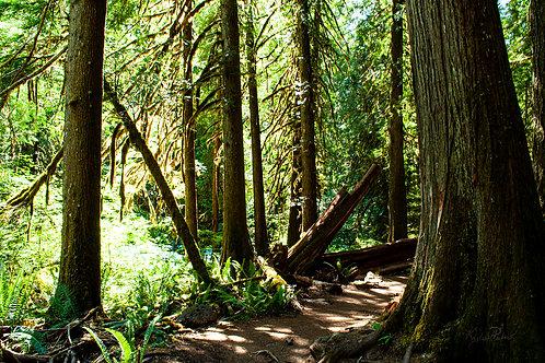 Westfir, Oregon