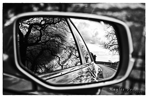 Hallow - Wing Mirror Series