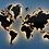 """Карта мира из дерева в расцветке """"Шоколадная"""" с подсветкой"""