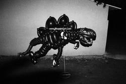 מעיין גורי אמנית הבלונים