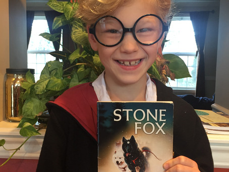 About A Book: Stone Fox