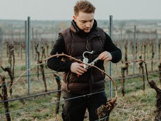 KÜWE Weinevents