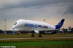 """A300-600ST """"Beluga"""" / EDDM"""