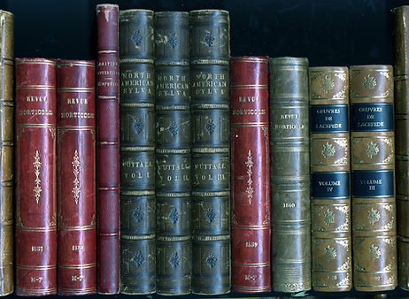 Rare antique natural history and botanical plate books.