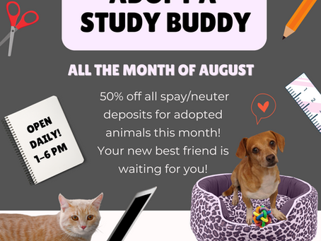 HSH Offers Back to School Discount
