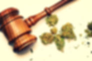 Missouri Medical Marijuana Business Litigation lawyer
