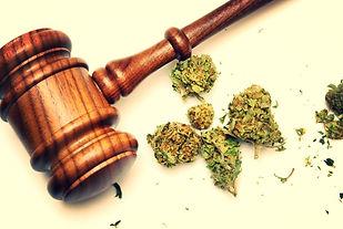 Missouri Medical Marijuana Business Litigation lawyer