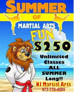 2021 NJ Martial Arts Summer Special.png